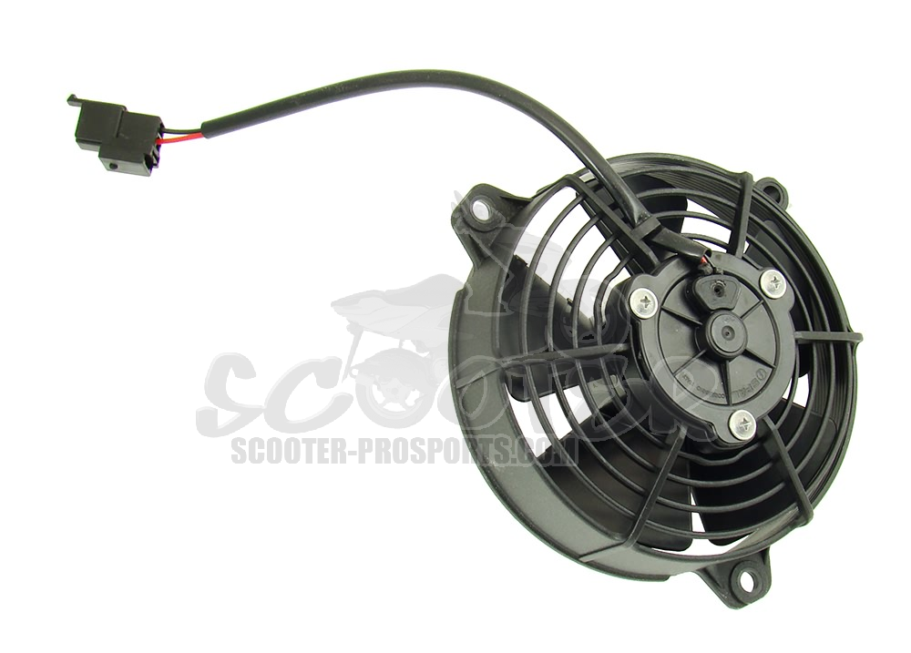 Ventilator Racing 144mm 12V - Wasserkühler Art.Nr.SPS102081