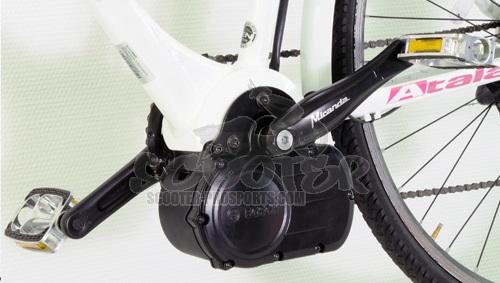 tuningmodul cdi e bike polini bosch classic line 50 km h. Black Bedroom Furniture Sets. Home Design Ideas